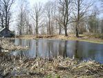 Банный пруд в парке в деревне Усадище (Бежаницы)